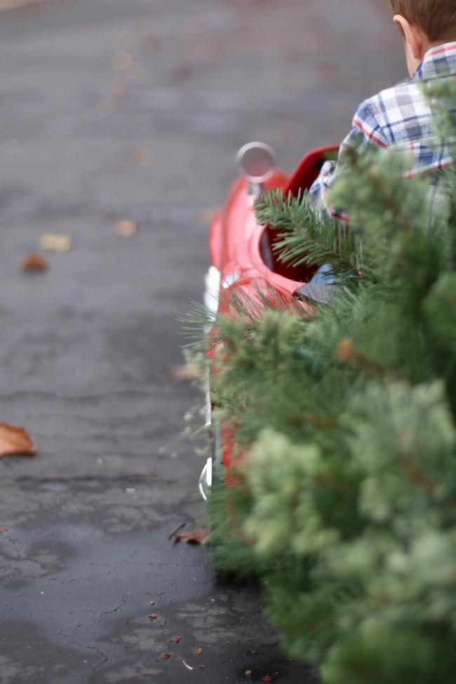Rhett Prinkey Christmas Pics 2014_111