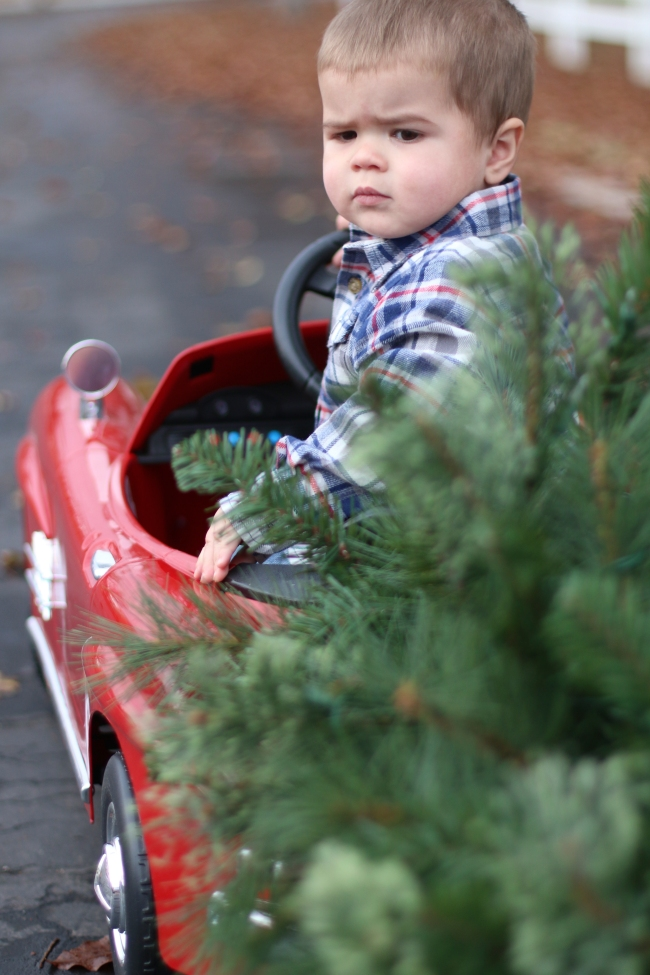 Rhett Prinkey Christmas Pics 2014_97