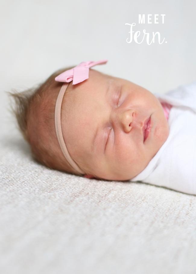 Fern Stephens Birth Announcement 20152