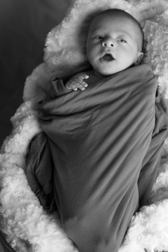Xander Gray Newborn Pics 2015_180 - Version 2