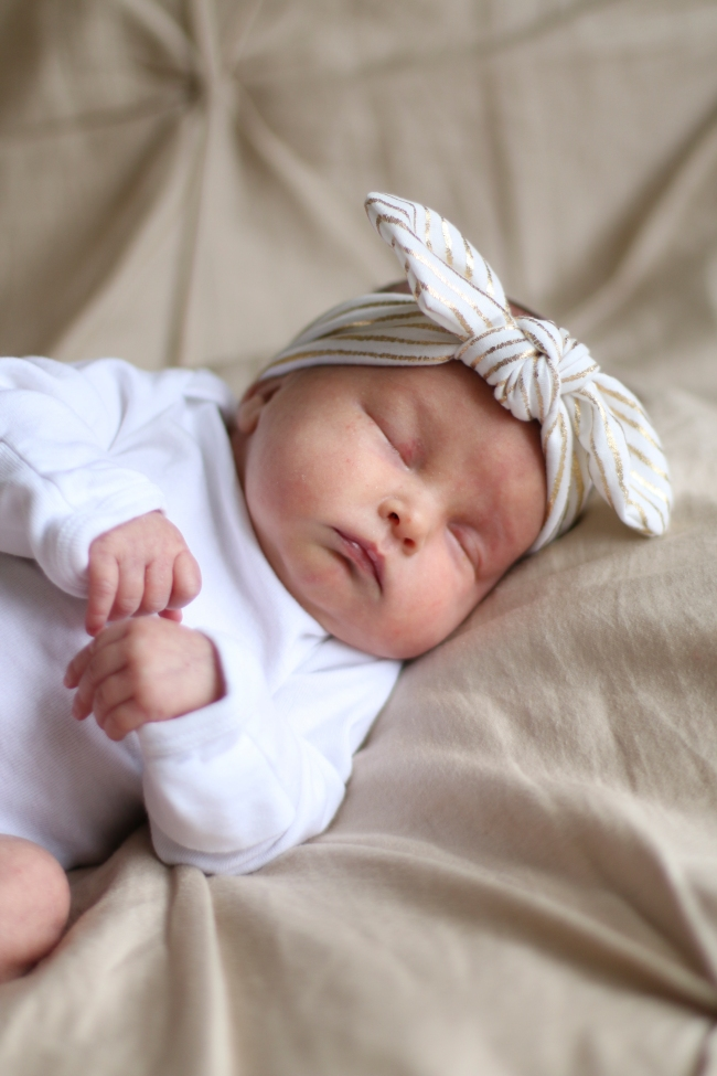 Addie & Ellie Spens Newborn Pics 2015_178
