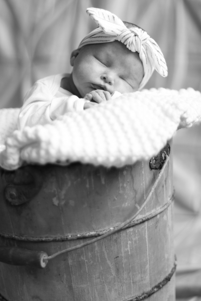 Addie & Ellie Spens Newborn Pics 2015_188 - Version 2