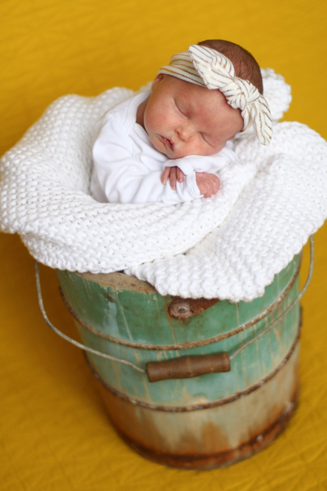 Addie & Ellie Spens Newborn Pics 2015_197