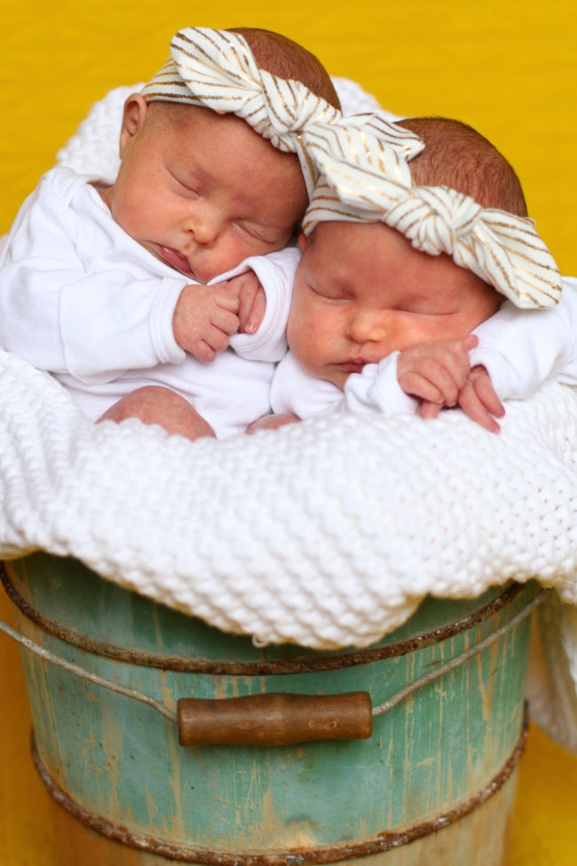 Addie & Ellie Spens Newborn Pics 2015_231