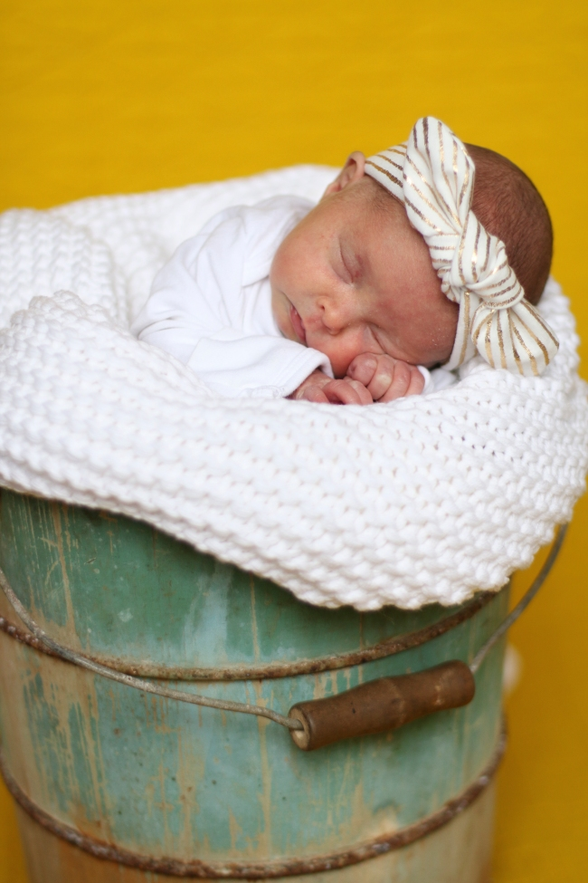 Addie & Ellie Spens Newborn Pics 2015_262
