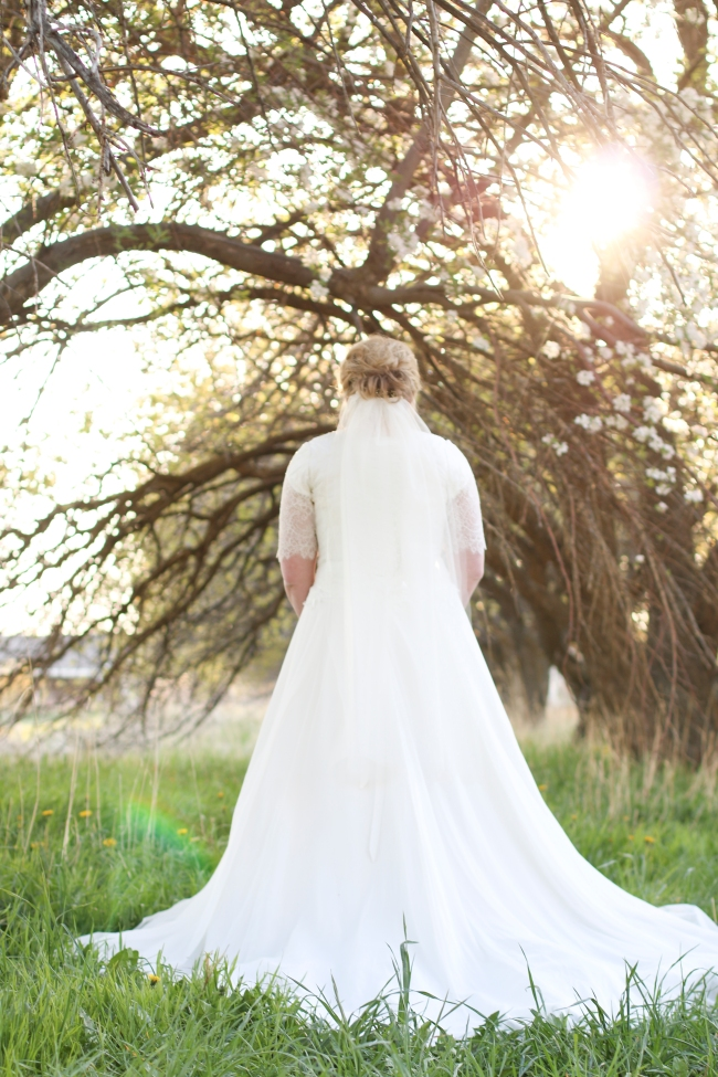 Amy Shoell Bridal Photos 2015_212