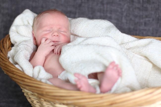 Grant Stephens Newborn Photos 2015_68