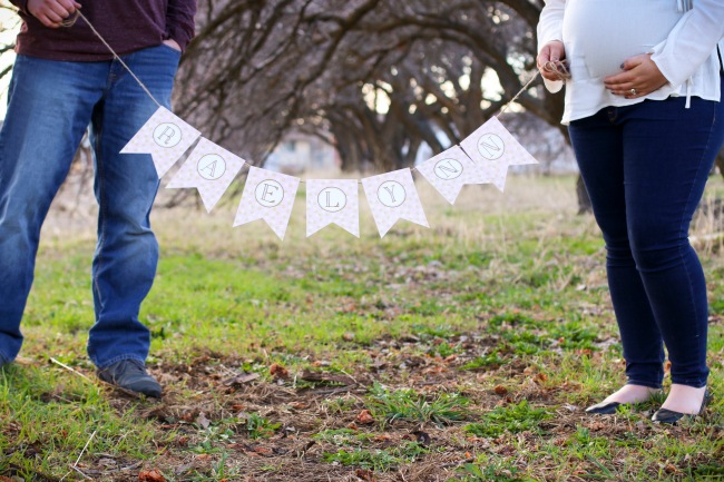 Tyler + Katie Maternity Photos 2016_12