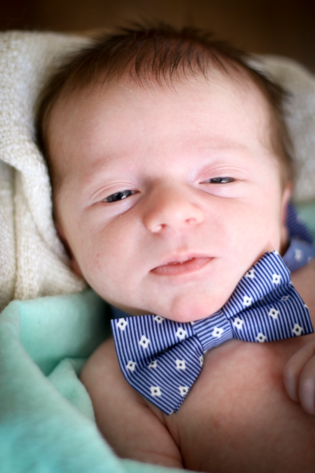 Marshall Rex Stevenson Newborn Photos 2016_140
