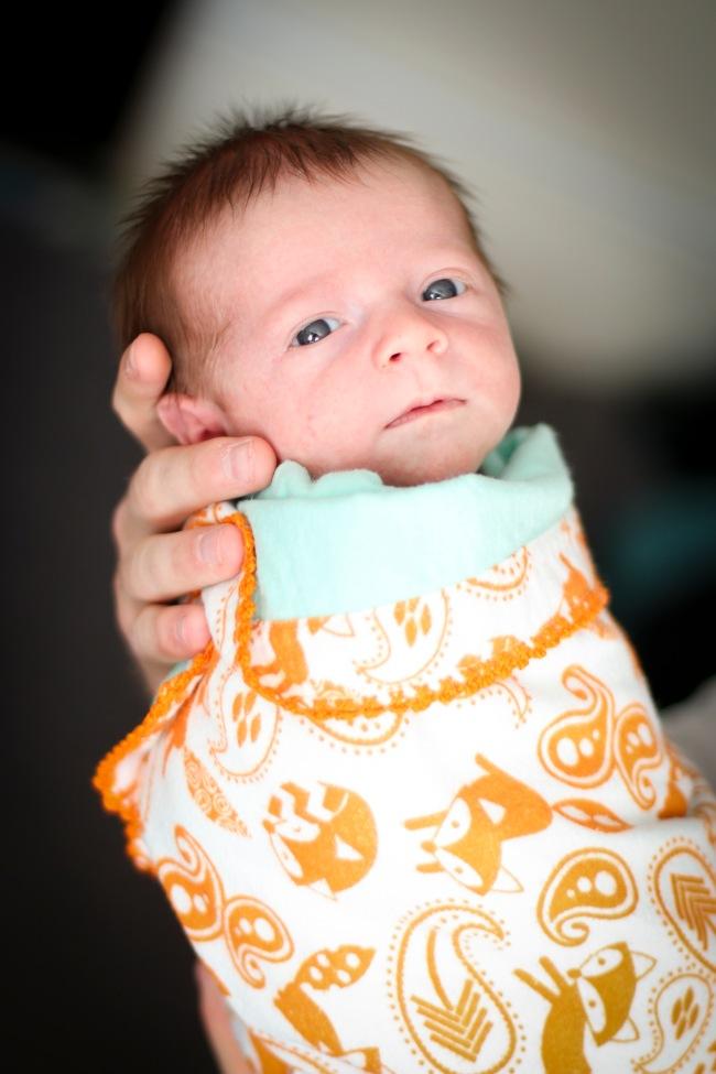 Marshall Rex Stevenson Newborn Photos 2016_42