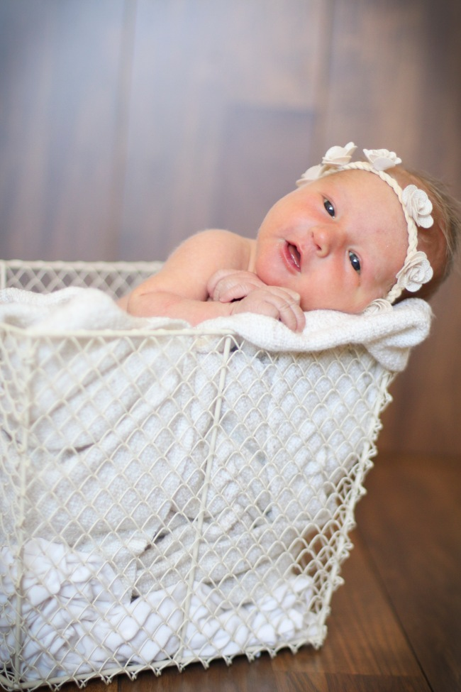 Paisley Newborn Photos 2016
